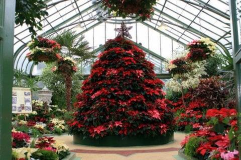 Floral Showhouse Christmas Display Is Back Niagara Falls