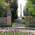 Queenston Heights Profile Image