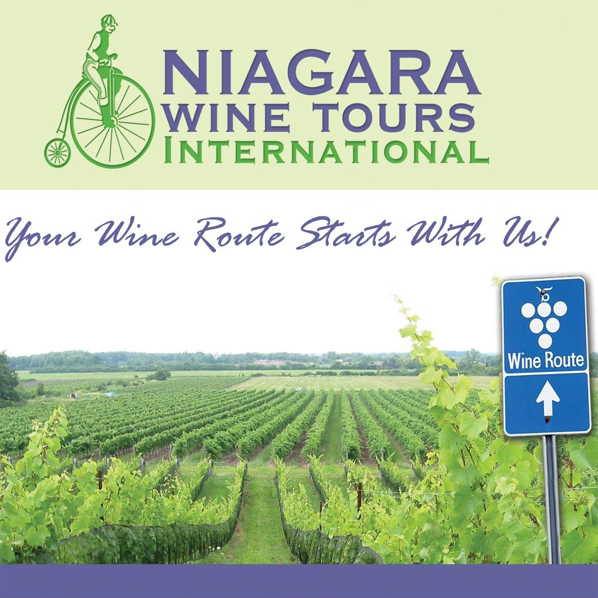 Deals On Wine Tours In Niagara