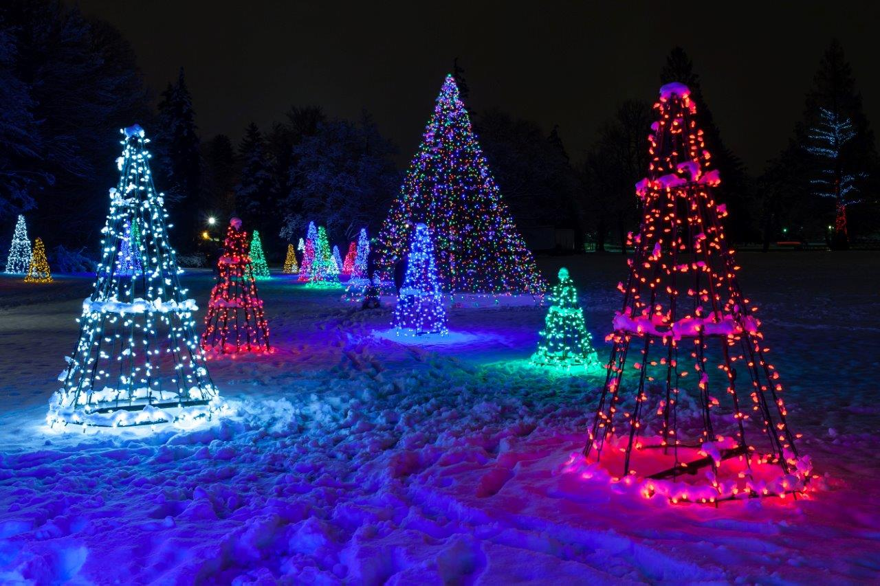 More on this years Ontario Power Generation's Winter Festival of ...